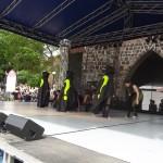 Festyn-Występy   (41)
